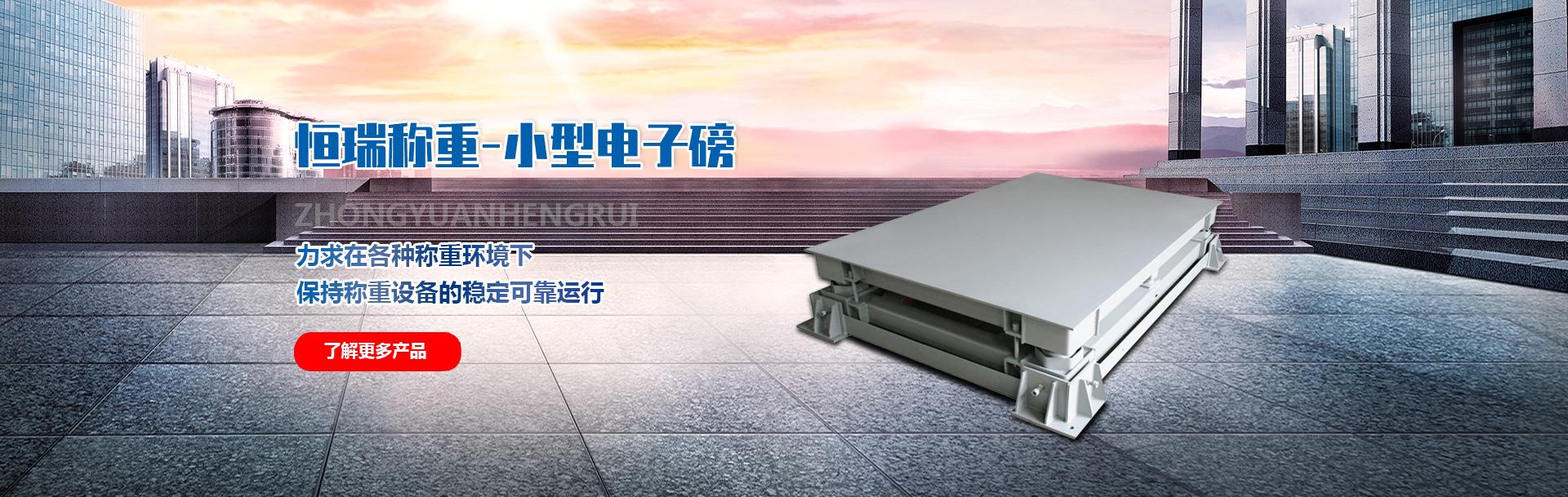 河南泛ya电竞官wangchen重设备有限公司